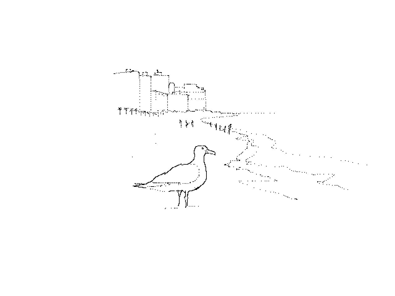 #1217 Miami Seagull