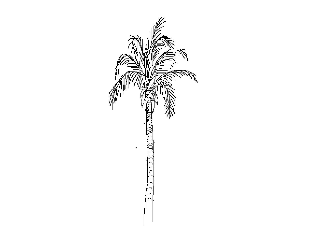 #1219 Palm
