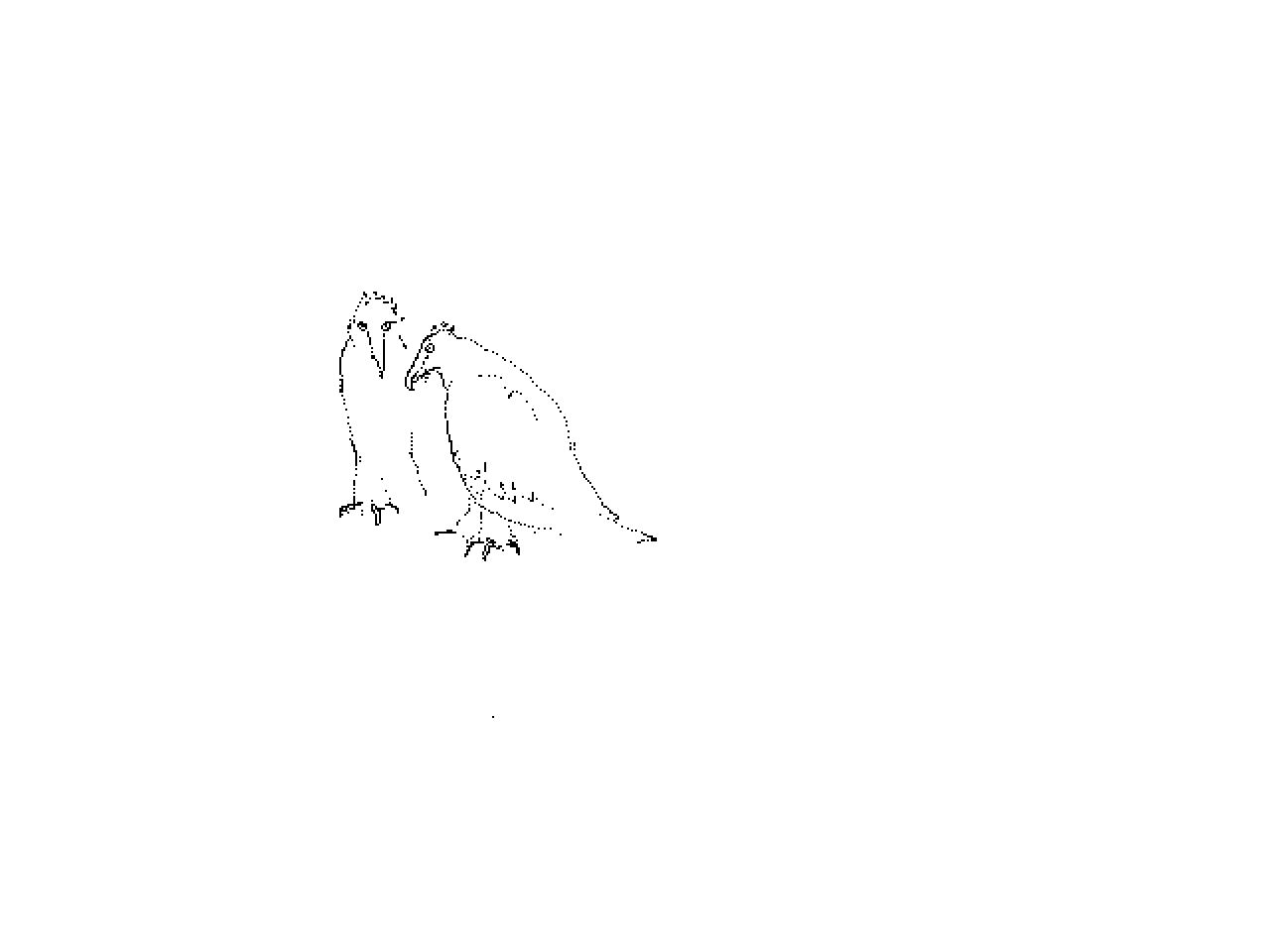 #1223 Two Bearded Vultures