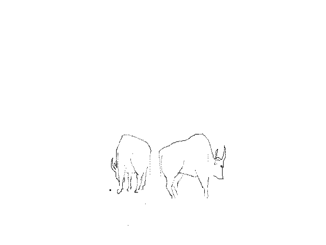 #1227 Two Gaur (Indian Bison)